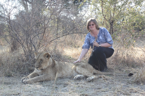 Walking with lions, Zambia