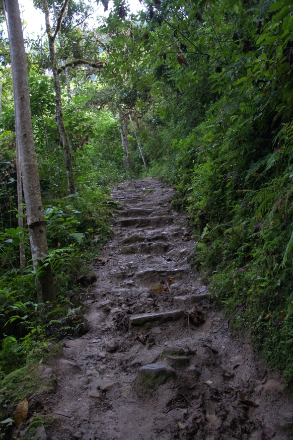 The trail to Gocta Falls in dry season