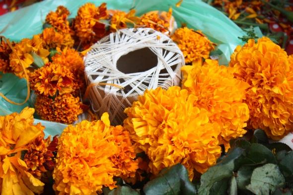 Preparing strings of marigold