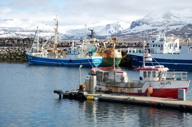 Icelandic fishing villages are charming