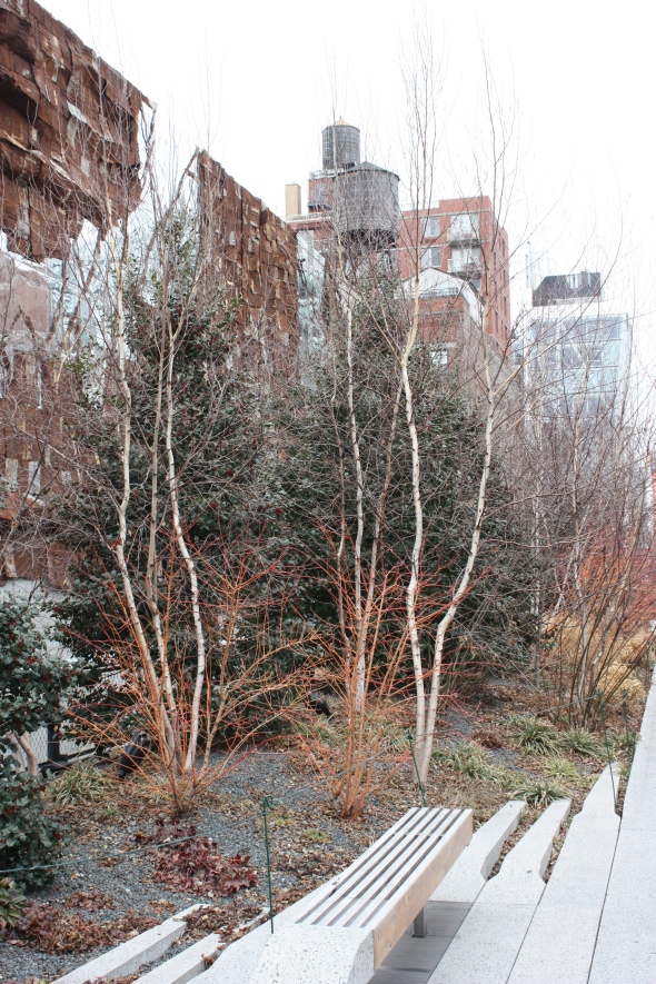 The High Line in winter