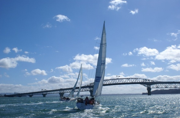 Pride of Auckland Sailing on Waitemata Harbour: Photo LSI Auckland CC 2.0