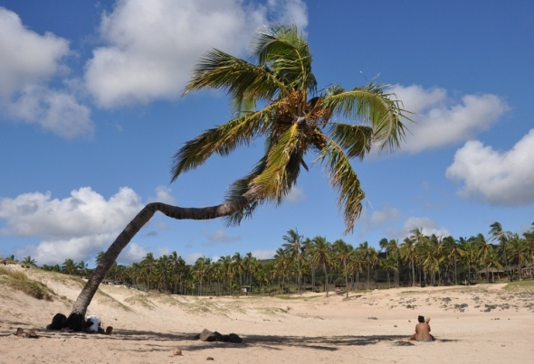 The beach at Anakena, one of only two sandy shores on an island characterised by rocky cliffs