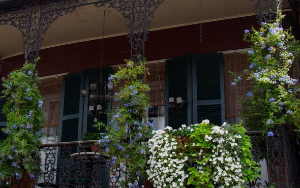 One of the French Quarter's ornate balconies