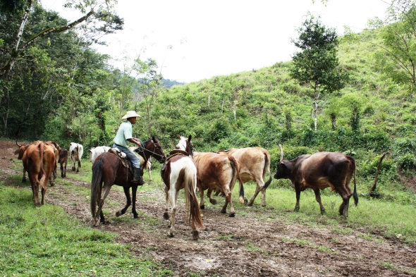 Riding with the cowboys up near the border with Guatemala