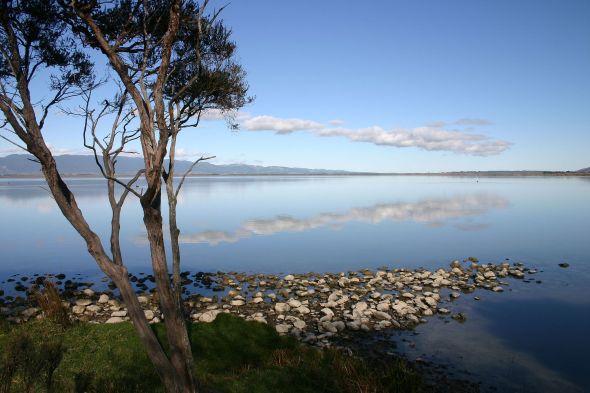 Lake Wairarapa, near to the wineries of Martinborough  Photo by K1w1m0nk1e CC BY-SA 4.0 via Wikimedia Commons