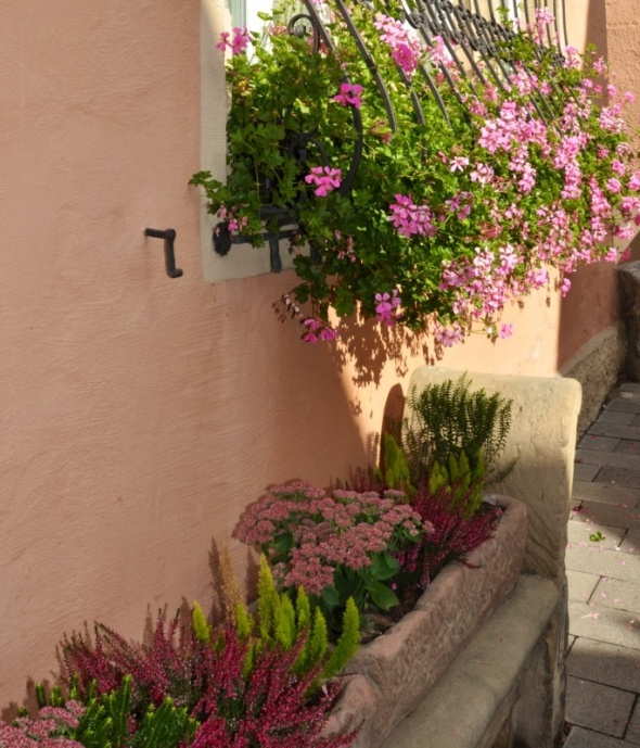 Troughs and window boxes crammed with flowers can be found throughout the town