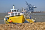 Harwich Harbour Ferry (8)