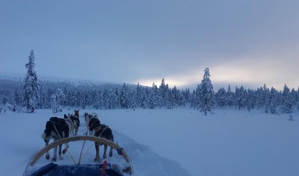 snow-3114601 (2)