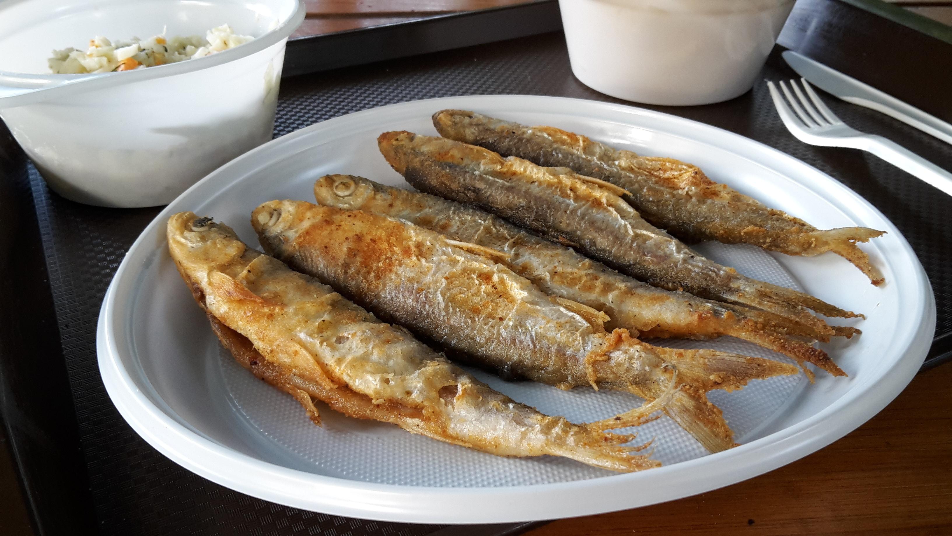 fish-4176085